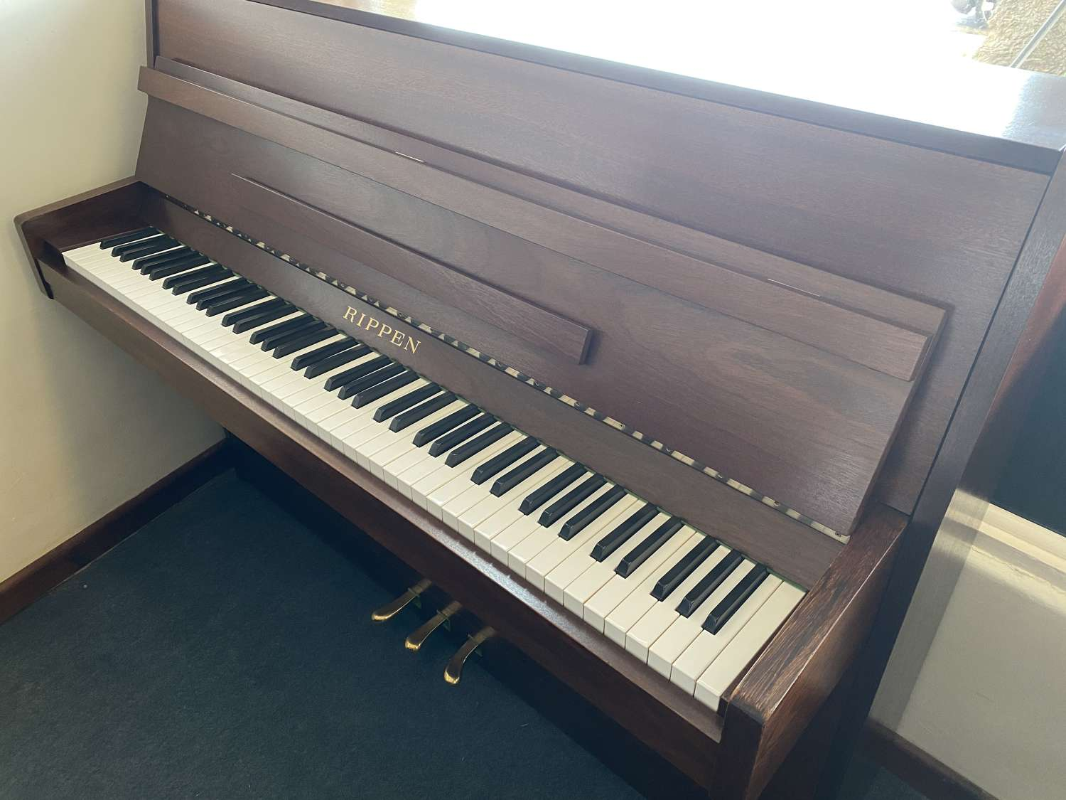 Rippen modern upright for sale